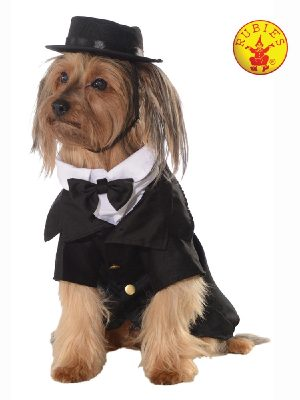 Dapper Man Pet costume